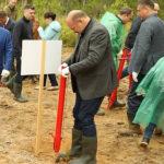 «Зеленая лига» – в Устьянском районе сегодня посажено 12,5 тысячи сеянцев сосны
