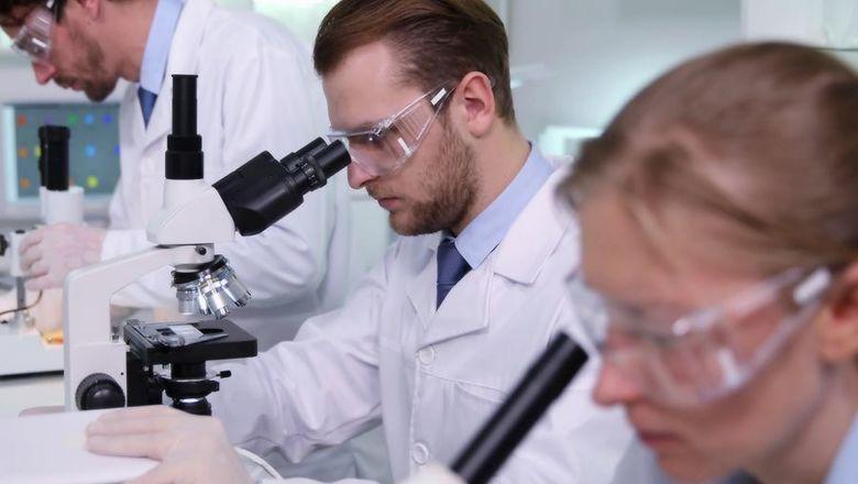 Архангельские молодые ученые получили грантовую поддержку в рамках нацпроекта «Наука»