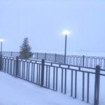Северная Двина в районе поселка Березник Виноградовского района 19 декабря