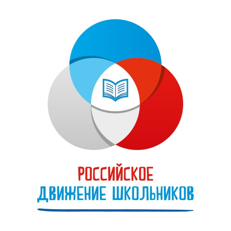 Миллион на добрые дела: волонтерские отряды РДШ получили поддержку своих проектов