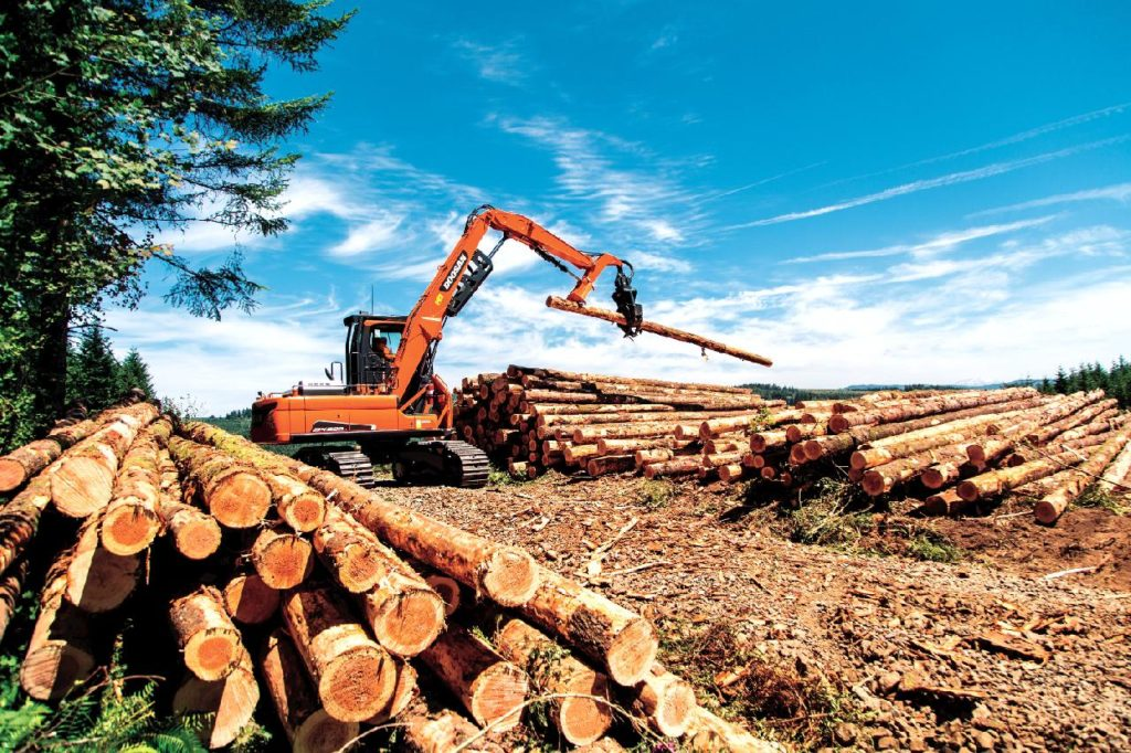 Архангельской области в 2020 году удалось сохранить объемы производства продукции ЛПК