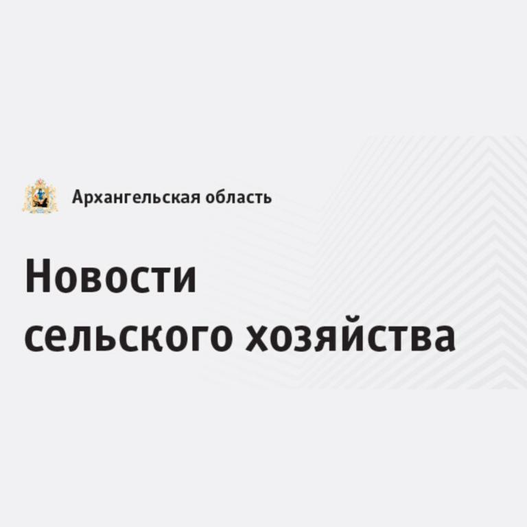 Аграрии Поморья получили из бюджета региона первые в этом году 66 миллионов рублей в качестве господдержки