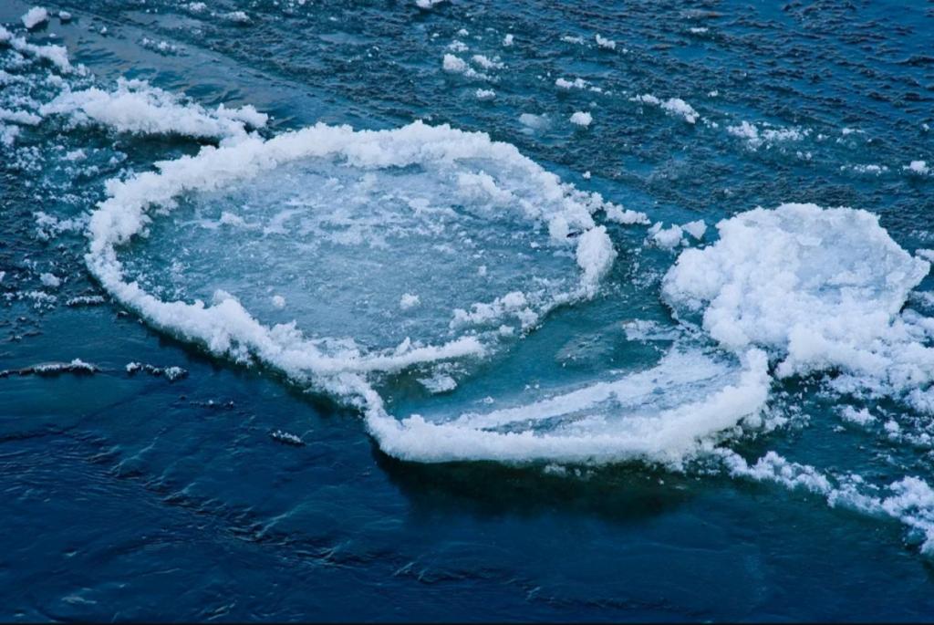Ледоход-2021: вскрытие рек ото льда в Поморье проходит без осложнений