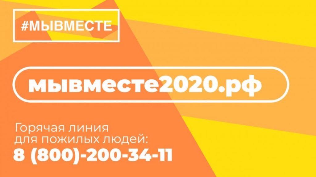 В Виноградовском районе работает волонтерский штаб Всероссийской акции взаимопомощи во время пандемии коронавируса «Мы вместе»