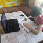 Вопросы дистанционного обучения в школах региона обсудят сегодня на онлайн-конференции