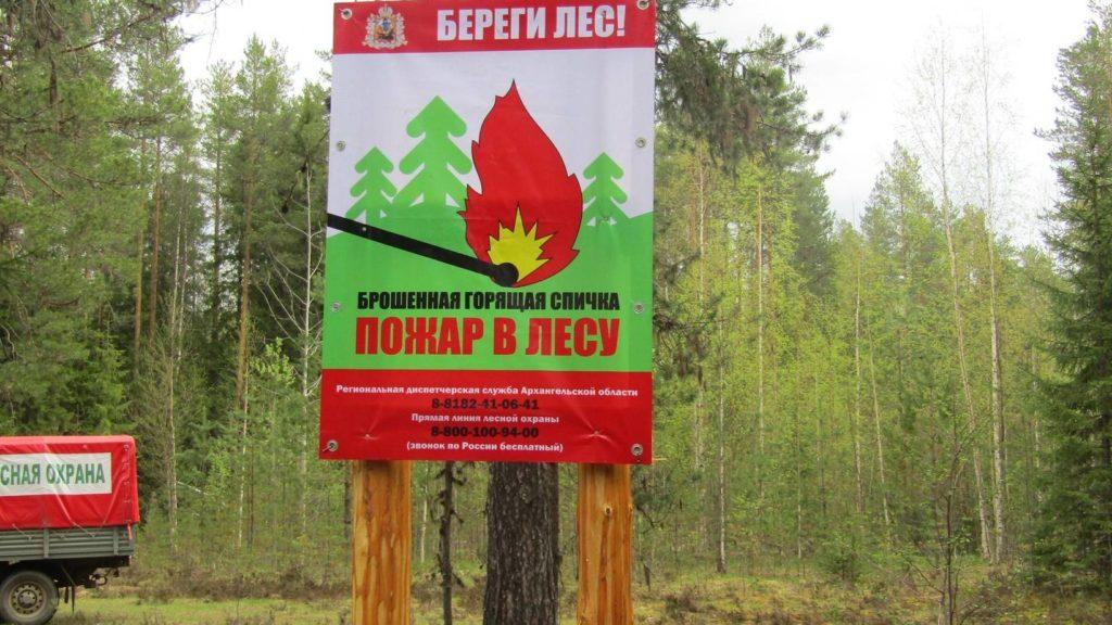 В Архангельской области отменен особый противопожарный режим в лесах