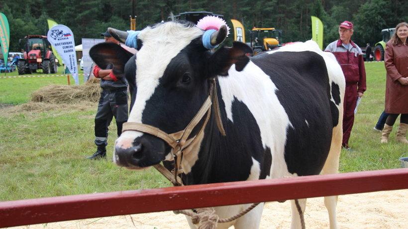 Принят федеральный закон по поддержке сельскохозяйственных кооперативов