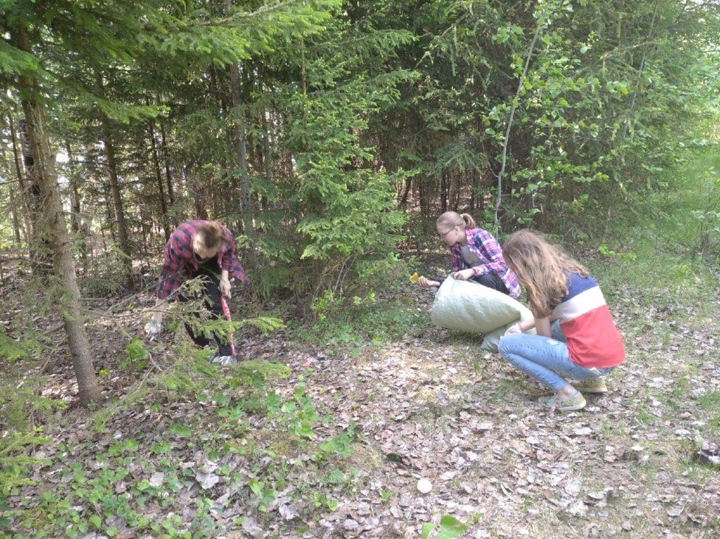 Учащиеся Сельменьгской школы Виноградовского района провели экологическую акцию «Чистый берег»