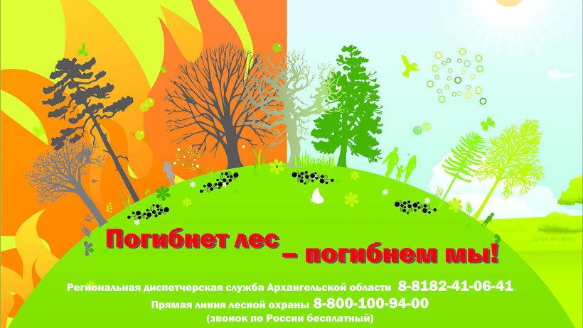 Пожароопасный сезон в Поморье – бдительность не теряем!