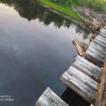 В Плесецком районе во время купания в реке утонул 9-летний мальчик