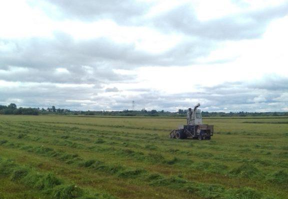 В хозяйствах Виноградовского района заканчивается кормозаготовительная кампания