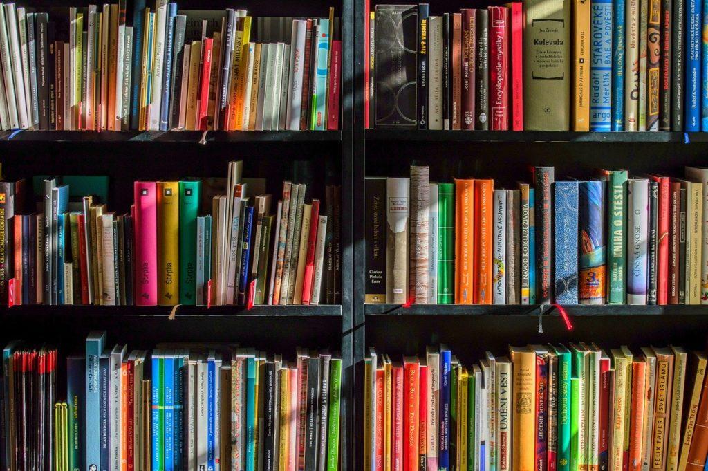 На ремонт библиотек Поморья выделено десять миллионов рублей