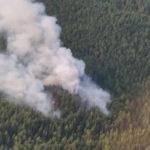 За неделю в Поморье – два лесных пожара