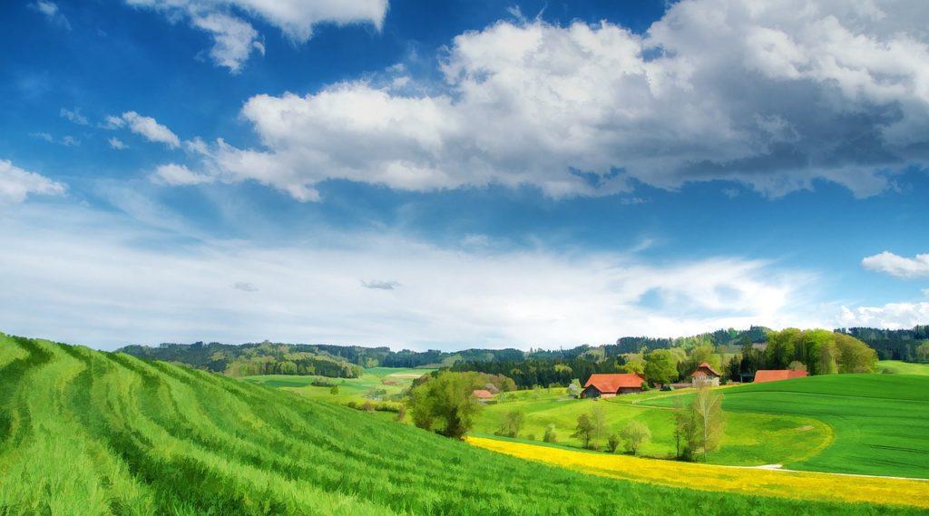 Общественный совет при минагропроме взял на контроль реализацию мероприятий комплексного развития сельских территорий