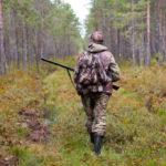 Новый сезон охоты в Архангельской области открыт