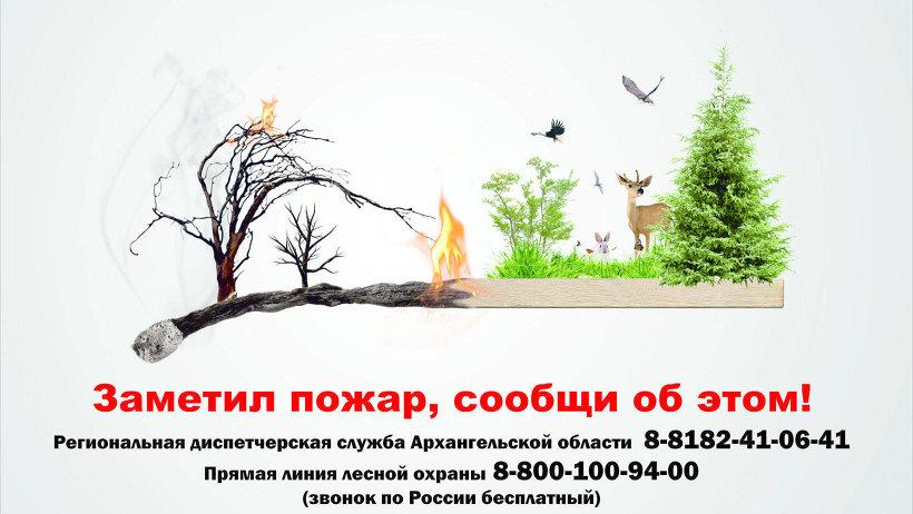 Пожароопасный сезон в лесах Поморья продолжается