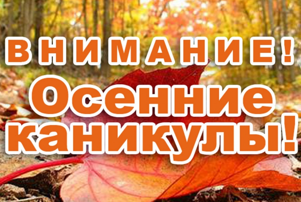 На территории Виноградовского района проводится профилактическое мероприятие «Детям – безопасные каникулы!»