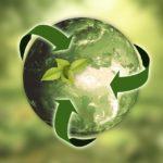 Подведены итоги конкурса на лучшую организацию работы по проведению «Дней защиты от экологической опасности» в Виноградовском районе