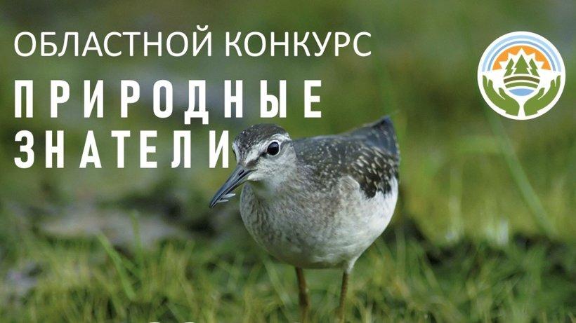Подведены итоги областного экоконкурса «Природные знатели-2020»: много работ поступило из Виноградовского района