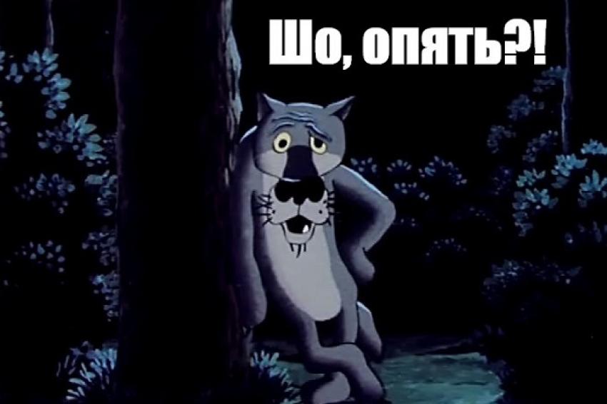 Один день из жизни волков