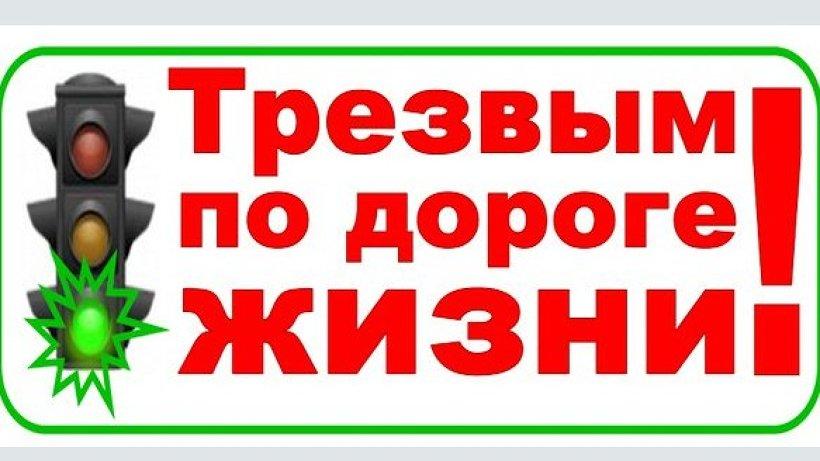 В Виноградовском районе пройдет профилактическое мероприятие «Трезвый водитель»