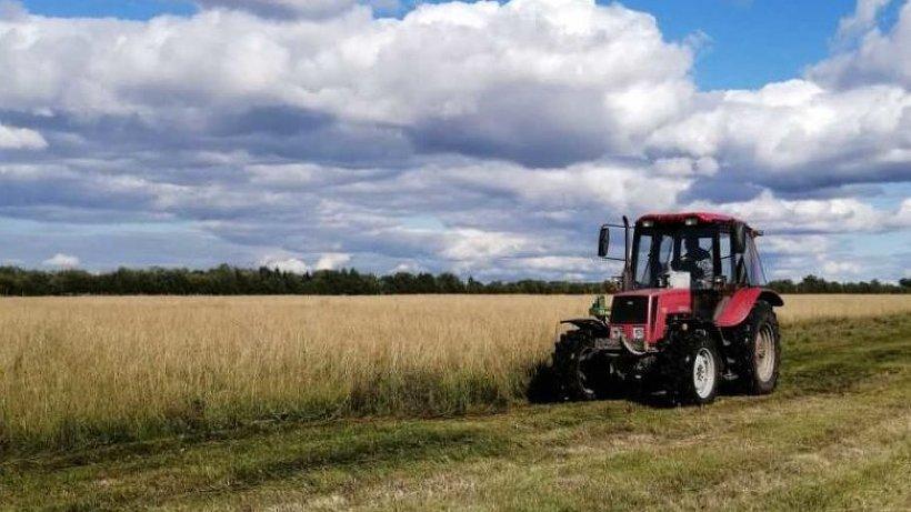 Более 44 млн рублей на возмещение посевных затрат предусмотрено аграриям Поморья в текущем году