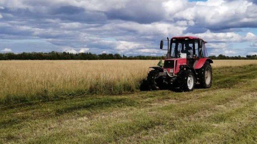 Обеспеченность аграриев минеральными удобрениями в преддверии весенних полевых работ – на особом контроле минагропромторга