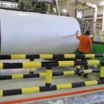 Архангельская область стала лидером по объемам деревопереработки в Северо-Западном федеральном округе