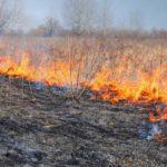 За прошедшую неделю в Виноградовском районе произошло много пожаров сухой травы