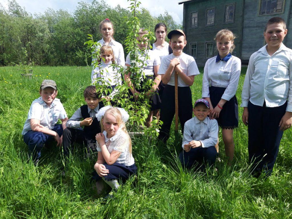 Виноградовские школьники присоединились к международной акции «Сад Памяти»