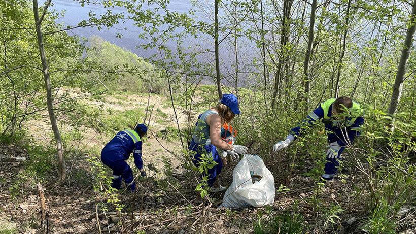 Чистые берега и причалы: экоактивисты Поморья присоединились к всероссийской акции