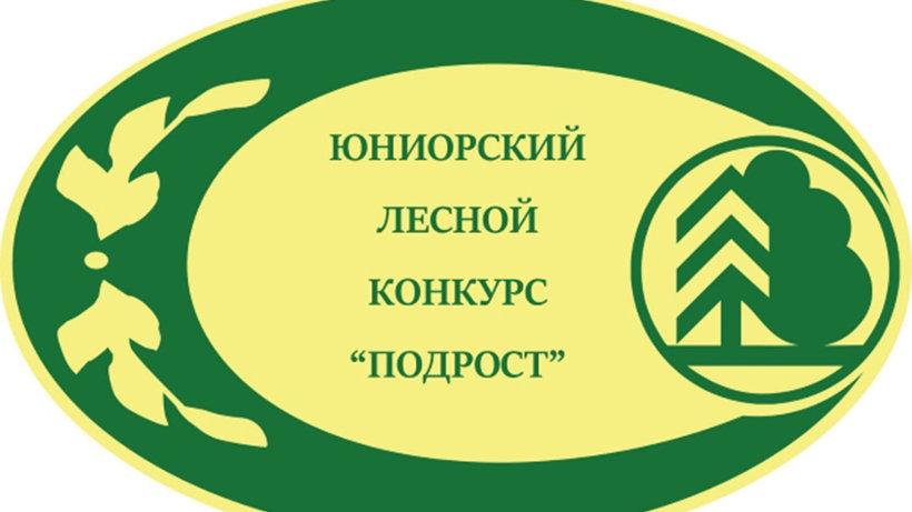 Школьница из Холмогорского района – в финале Всероссийского лесного конкурса