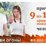 Майские праздники в Поморье прошли без лесных пожаров