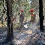 В лесах Архангельской области вновь введен особый противопожарный режим