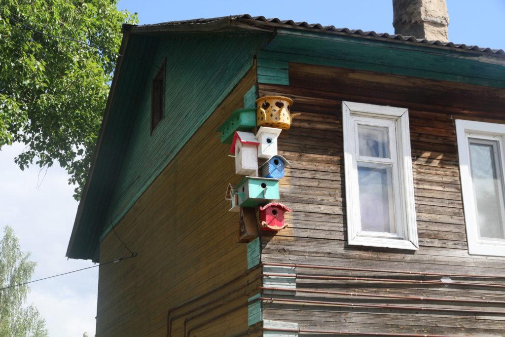 «Вдохновение» поселка Сельменьга проводит конкурс на лучшую кормушку