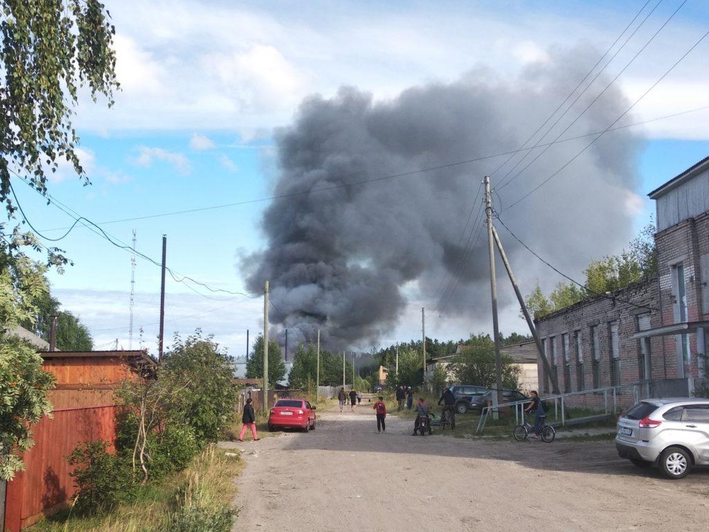 На частной пилораме в Виноградовском районе ликвидировали пожар