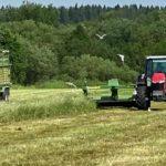 Сельхозтоваропроизводителям напоминают о возможности застраховать посевы от природных ЧС