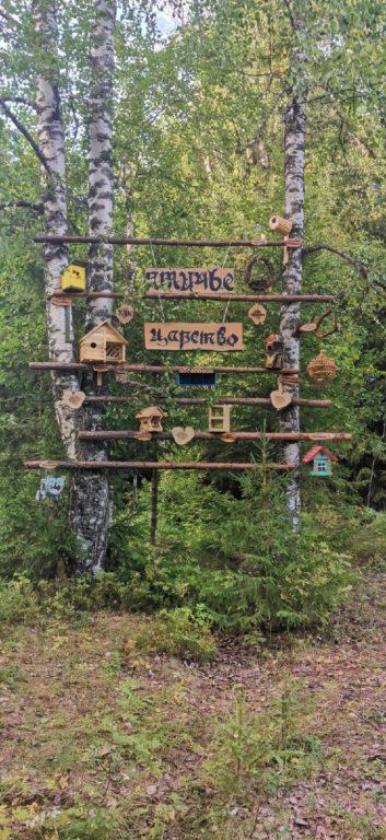 Птичье царство  в Сельменьге