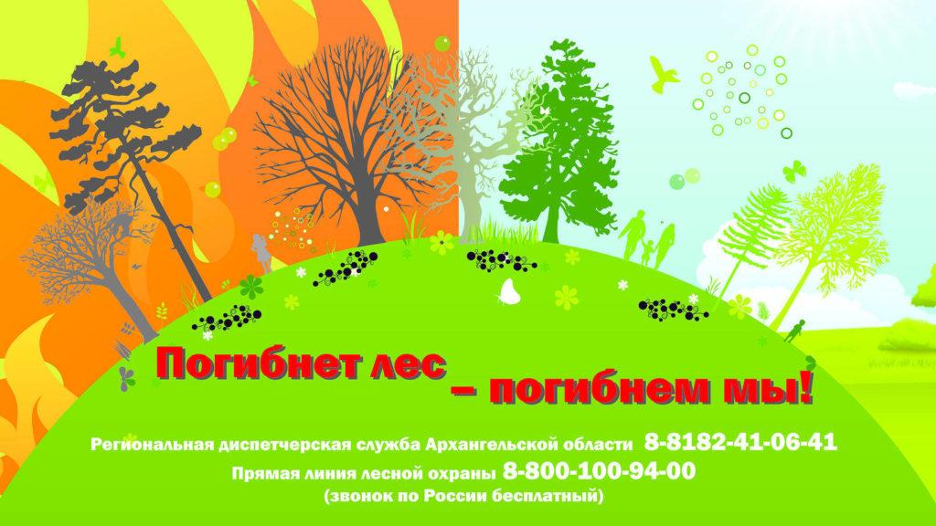 На тушение и авиамониторинг лесных пожаров региону дополнительно выделено более 93 млн рублей федеральной субвенции