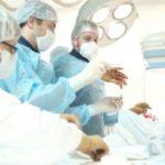Александр Цыбульский подписал указ об учреждении премии медицинским работникам области «Профессия – Жизнь»