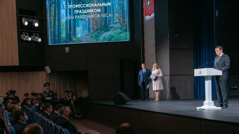 В развитие лесной отрасли Поморья в ближайшие годы будет вложено свыше 140 млрд рублей