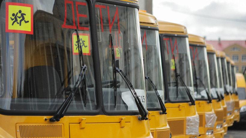 Более 100 новых автобусов получат школы Поморья, в том числе Виноградовского района