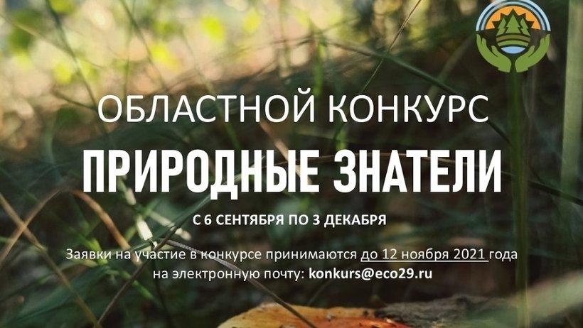 Минлеспром региона приглашает к участию в областном экологическом конкурсе